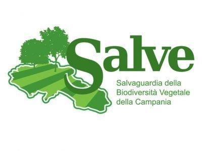 Meeting SALVE PROJECT effe erre congressi napoli