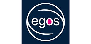 European Group for Organizational Studies